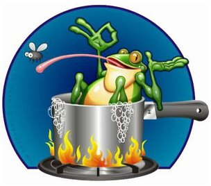the Frog in the Kettle